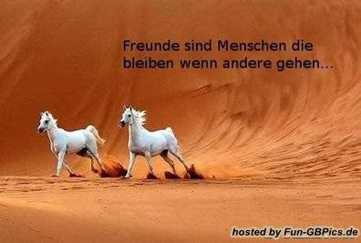Freunde Sprüche Gaestebuchbild   Facebook Bilder GB Bilder