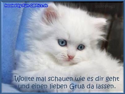 Grüße Whatsapp Bilder