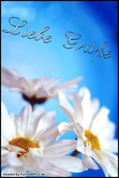liebe gr252sse g228stebuch bild facebook bildergb bilder