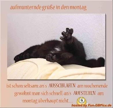 Montag Sprüche Bild - Facebook Bilder-GB Bilder-Whatsapp ...