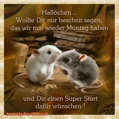 Montag Spruche Bild Fur Facebook Facebook Bilder Gb Bilder