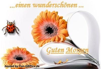 Schönen Guten Morgen Grüsse Bild Facebook Bilder Gb Bilder
