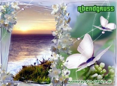 Abend Grüße Whatsapp Bilder