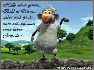Frohe Ostern Bilder Spruch Facebook Bilder Gb Bilder Whatsapp