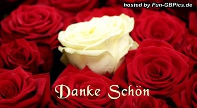 dankesch246n facebook bild facebook bildergb bilder