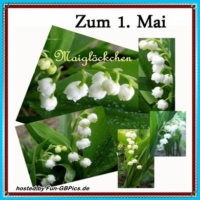 1. Mai Whatsapp Bilder