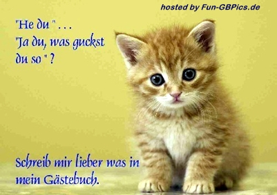 GB Sprüche Whatsapp Bilder
