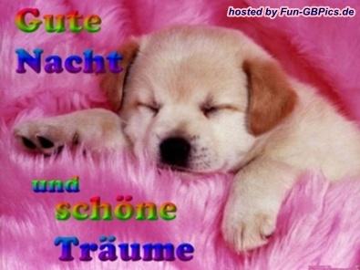 Schöne Gute Nacht Bilder Facebook