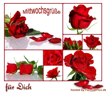 Für Dich Whatsapp Bilder